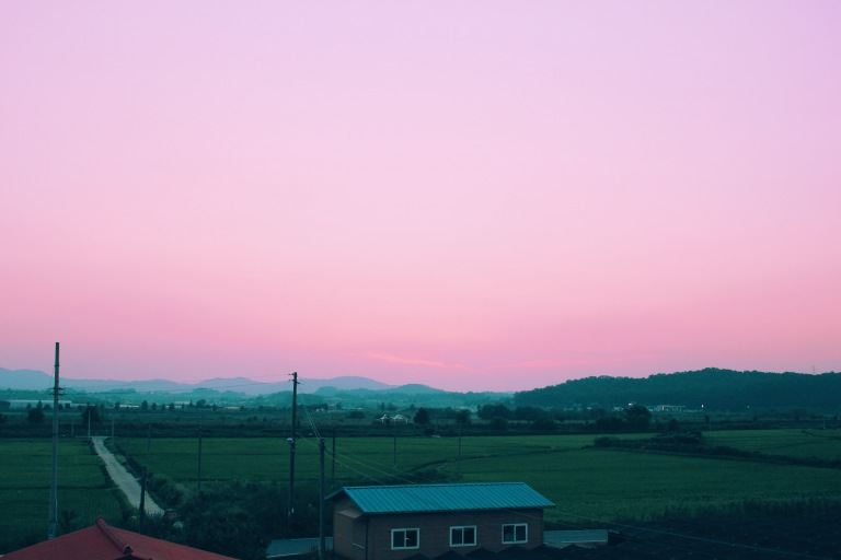 Processed with VSCO with tk preset